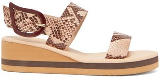 Ancient Greek Sandals Clio Rainbow Python-embossed Leather Wedges - Pink Multi