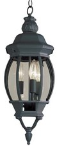 Tucker 3-Light Outdoor Hanging Lantern Charlton Home Color: Rust