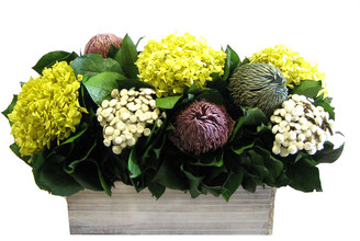 Bougainvillea Banksia, Hydrangea & Basil In Short Wooden Rectangular Container
