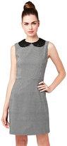 Betsey Johnson Serendipity Lace Collar Dress
