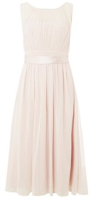 Dorothy Perkins Womens Showcase Blush 'Bethany' Midi Skater Dress