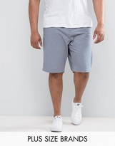 French Connection PLUS Chino Short