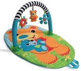 Infantino Explore & Store Activity Gym Bear by