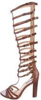 Rachel Zoe Mason Gladiator Knee-High Sandals