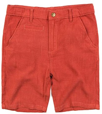 Appaman Adaptive Kids Adaptive Dockside Shorts (Little Kids/Big Kids) (Rust) Boy's Shorts