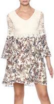 Easel Floral Lace Dress