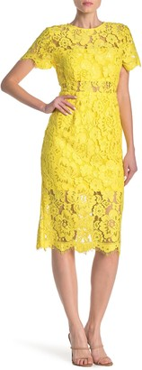 NSR Lace Short Sleeve Sheath Midi Dress