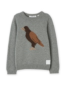 Country Road Eagle Knit Crew