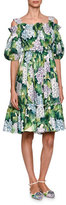 Dolce & Gabbana Hydrangea Printed Off-the-Shoulder Dress, Green