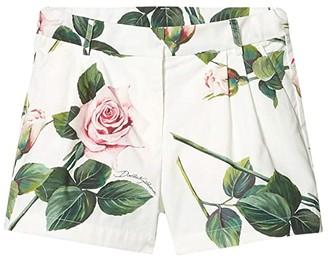 Dolce & Gabbana Kids Shorts L52Q24HS5GG (Toddler/Little Kids) (Rose Rosa Fdo Panna) Girl's Shorts
