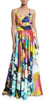 Milly Sleeveless V-Neck Floral-Print Gown, Multi Colors