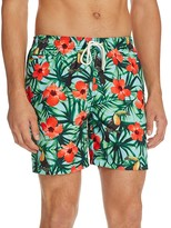 Trunks Toucan Bay Floral Sano Swim