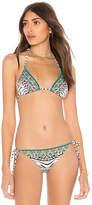 Camilla Triangle Bikini Top
