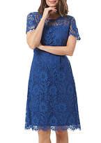 Sugarhill Boutique Cecilia Lace Fit And Flare Dress, Blue
