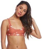 Stone Fox Swim Retro Star Coco Bikini Top 8163214
