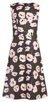 Marni Whisper-print cotton-poplin midi dress