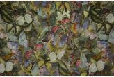 Valentino Camubutterfly Scarf