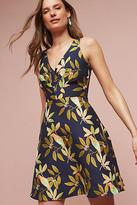 Eva Franco Bird Jacquard Dress
