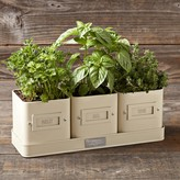 Williams-Sonoma Herb Pot with Tray