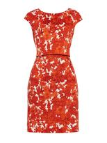 Max Mara Leslie dress