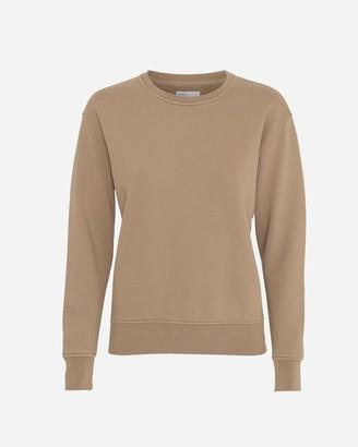 Colorful Standard - Womens Crew Neck Sweatshirt Desert Khaki - XS / Marron
