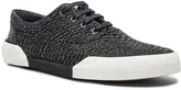 Lanvin Zebra Linen Oxford Sneaker
