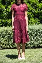Erin Fetherston Aubergine Lacey Dress