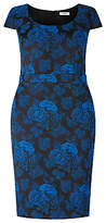 Studio 8 Tarina Dress, Cobalt/Black