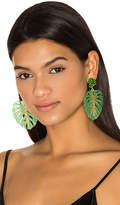 Mercedes Salazar Carmen Miranda Earrings in Green.