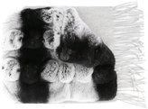N.Peal variated rabbit fur scarf - women - Rabbit Fur/Cashmere - One Size