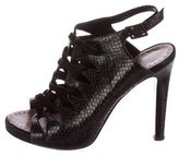 Proenza Schouler Snakeskin Caged Sandals