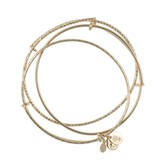 Alex and Ani Set of 3 Bangle Set