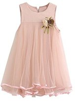 Gift!! Toddler Girl Chiffon Dresses Sleeveless Drape Dress + Brooch (6T, Pink)