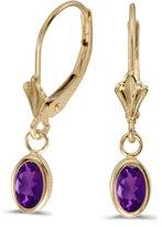 Direct-Jewelry 14k Yellow Gold Oval Amethyst Bezel Lever-back Earrings