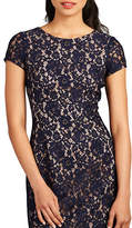 Donna Morgan Alice Cap Sleeve Lace Gown