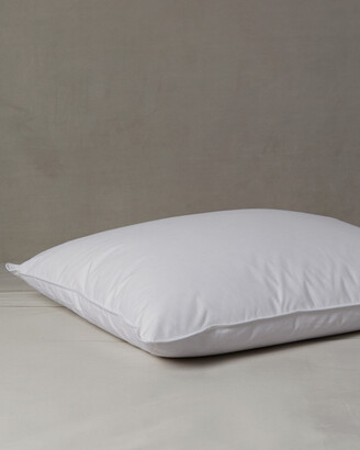 Belle Epoque Studio Firm Pillow
