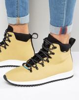 Native AP Apex Laceup Boots