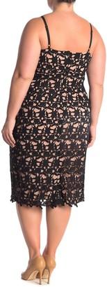 City Chic Illustrious Lace Dress