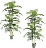 Rogue Artificial Cane Palm, Large (Set of 2)