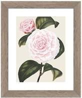 PTM Images Pink Vintage Roses Wall Art