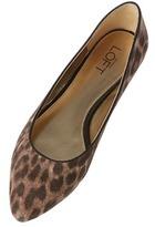 LOFT Taylor Leopard Print Skimmer Flats