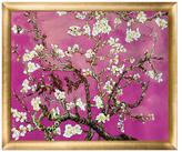 Branches of an Almond Tree in Blossom, Magenta by La Pastiche Originals (Canvas)