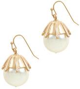 J.Crew Pearl drop earrings