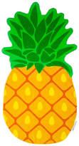 Trina Turk Pineapple Shaped Towel