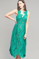 Tracy Reese Aria Lace Midi Dress