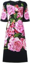 Dolce & Gabbana rose print cady dress - women - Silk/Spandex/Elastane/Viscose - 42
