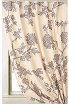 Avignon Curtain
