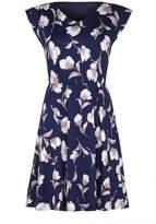 Mela London Curve Floral Print Short Sleeve Skater Dress