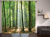 Ambesonne Farm House Decor Collection, Morning Sunbeams Hit Natural Alive Spring Forest from the Sky in a Sunny Day Picture, Living Room Bedroom Curtain 2 Panels Set, 108 X 90 Inches, Green Khaki