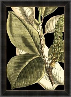 La Grolla Tranquil Tropical Leaves Ii Framed Print